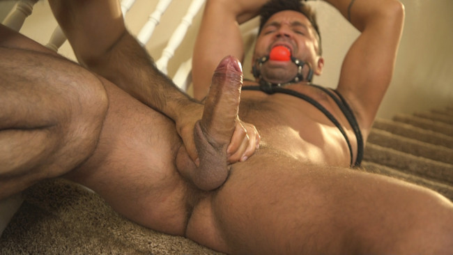 Bound Gods - Ali Liam  - Dominic Pacifico - All Play, No Work #7