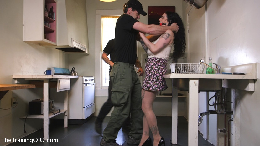 Domestic training arabelle raphael. What is to be done when an