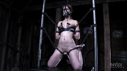 What happened to shortfuse video bondage