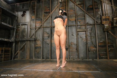 Bianca Dagger bound for the first time, forced to cum.