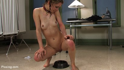 Puppy Girl Calico pissing herself and taught a lesson