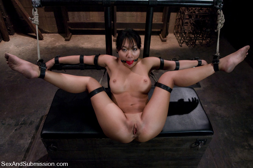 Hardy asian bondage porn videos love volunteer