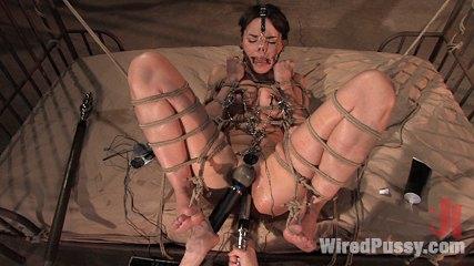 Dana dearmond returns to wiredpussy to be dominated by claire adams. Claire Adams dominates Dana DeArmond in sapphic BDSM scene