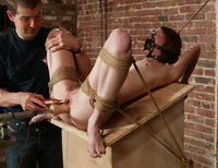 Ashley is placed on a wooden block in a cage.