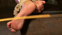 Skylar Price: Blond Bombshell Bamboo Bound