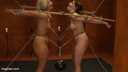 Bondage Bimbos Bamboo Bound