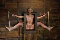 Tara Lynn Fox: Boxed up and carted around...