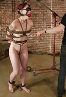 A rope suspension leaves Nina's pussy wonderfully open.