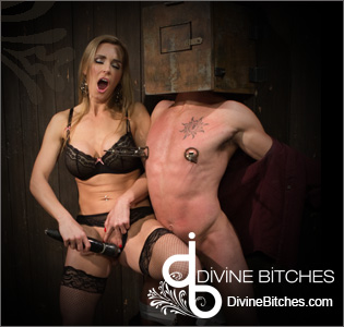 devine bitches punish porn