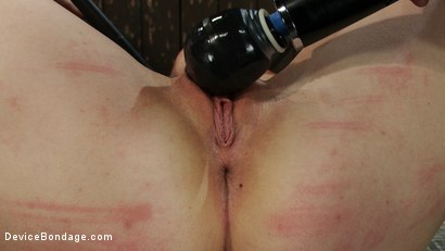 Photo number 7 from Excruciating Pleasure shot for Device Bondage on Kink.com. Featuring Payton Bell in hardcore BDSM & Fetish porn.