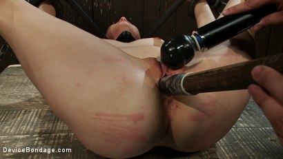 Photo number 9 from Excruciating Pleasure shot for Device Bondage on Kink.com. Featuring Payton Bell in hardcore BDSM & Fetish porn.