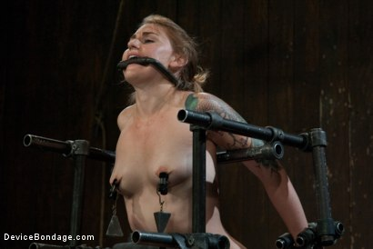 Photo number 14 from Bound in a custom metal bondage rig.<br> Made to cum, she can't stop the orgasms that rip though her shot for Device Bondage on Kink.com. Featuring Payton Bell in hardcore BDSM & Fetish porn.