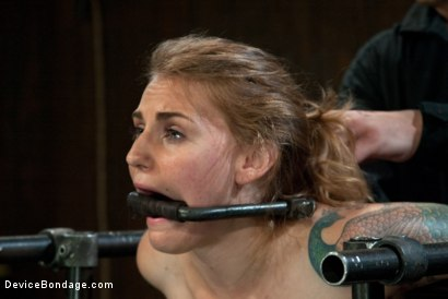 Photo number 4 from Bound in a custom metal bondage rig.<br> Made to cum, she can't stop the orgasms that rip though her shot for Device Bondage on Kink.com. Featuring Payton Bell in hardcore BDSM & Fetish porn.