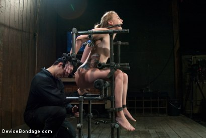 Photo number 9 from Bound in a custom metal bondage rig.<br> Made to cum, she can't stop the orgasms that rip though her shot for Device Bondage on Kink.com. Featuring Payton Bell in hardcore BDSM & Fetish porn.