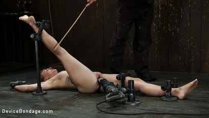 Photo number 3 from Omega fucks another into<br>Sexual Oblivion  shot for Device Bondage on Kink.com. Featuring Payton Bell in hardcore BDSM & Fetish porn.