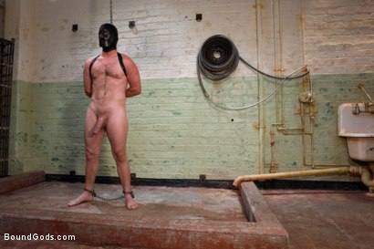 Photo number 1 from The Ass Master shot for Bound Gods on Kink.com. Featuring Josh West, Kyler Rogue and The GIMP in hardcore BDSM & Fetish porn.