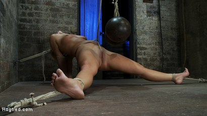 Photo number 14 from Elbows bound, spread on the floor, made to cum over and over   Crotch rope double bind. Ouchy! shot for Hogtied on Kink.com. Featuring Tara Lynn Foxx and Isis Love in hardcore BDSM & Fetish porn.