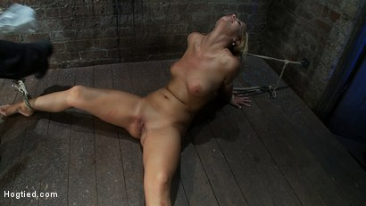 Photo number 6 from Elbows bound, spread on the floor, made to cum over and over   Crotch rope double bind. Ouchy! shot for Hogtied on Kink.com. Featuring Tara Lynn Foxx and Isis Love in hardcore BDSM & Fetish porn.