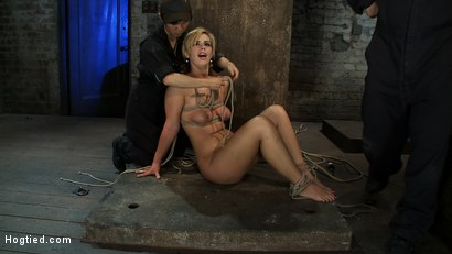 Photo number 15 from Category 5 Suspension, Made to Suck Cock and Cum<br>All Tying on Screen, Amazing live rope bondage! shot for Hogtied on Kink.com. Featuring Tara Lynn Foxx and Isis Love in hardcore BDSM & Fetish porn.