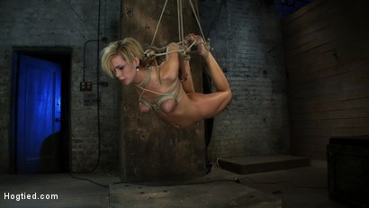 Photo number 12 from Category 5 Suspension, Made to Suck Cock and Cum<br>All Tying on Screen, Amazing live rope bondage! shot for Hogtied on Kink.com. Featuring Tara Lynn Foxx and Isis Love in hardcore BDSM & Fetish porn.