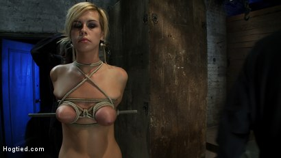 Photo number 3 from Category 5 Suspension, Made to Suck Cock and Cum<br>All Tying on Screen, Amazing live rope bondage! shot for Hogtied on Kink.com. Featuring Tara Lynn Foxx and Isis Love in hardcore BDSM & Fetish porn.