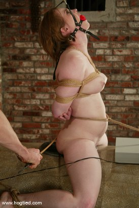 Photo number 11 from Tracey Hilton shot for Hogtied on Kink.com. Featuring Tracey Hilton in hardcore BDSM & Fetish porn.