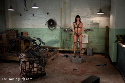 Photo number 5 from The Training of Gia DiMarco , Day One shot for The Training Of O on Kink.com. Featuring Gia DiMarco and Cherry Torn in hardcore BDSM & Fetish porn.
