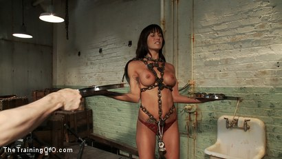 Photo number 8 from The Training of Gia DiMarco , Day One shot for The Training Of O on Kink.com. Featuring Gia DiMarco and Cherry Torn in hardcore BDSM & Fetish porn.