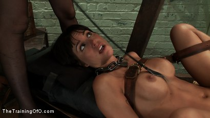 Photo number 12 from The Training of Gia DiMarco , Day One shot for The Training Of O on Kink.com. Featuring Gia DiMarco and Cherry Torn in hardcore BDSM & Fetish porn.