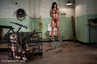Photo number 4 from The Training of Gia DiMarco , Day One shot for The Training Of O on Kink.com. Featuring Gia DiMarco and Cherry Torn in hardcore BDSM & Fetish porn.