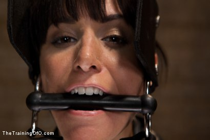 Photo number 7 from The Training of Gia DiMarco, Day Three shot for The Training Of O on Kink.com. Featuring Gia DiMarco and Maestro in hardcore BDSM & Fetish porn.