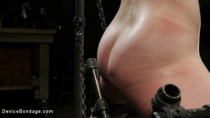 Photo number 3 from Chained in the Air and Brutalized shot for Device Bondage on Kink.com. Featuring Vivienne Del Rio in hardcore BDSM & Fetish porn.