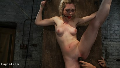 Photo number 10 from Is that the hot blond from <br>Gossip Girl? shot for Hogtied on Kink.com. Featuring Lily LaBeau in hardcore BDSM & Fetish porn.