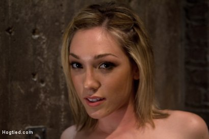 Photo number 15 from Is that the Hottie from Gossip Girl, bound, spread, caned<br> ass fucked and made to cum and cum!?! shot for Hogtied on Kink.com. Featuring Lily LaBeau in hardcore BDSM & Fetish porn.