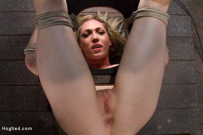 Photo number 4 from 19yr old Lily LaBeau looks like that Gossip Girl blond.<br>Anally fucked, made to cum over and over. shot for Hogtied on Kink.com. Featuring Lily LaBeau in hardcore BDSM & Fetish porn.