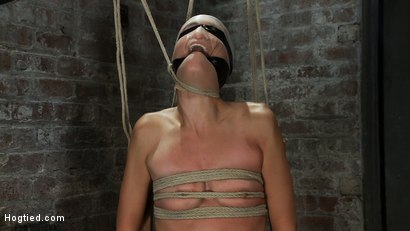 Photo number 8 from Never stopping   ORGASMS shot for Hogtied on Kink.com. Featuring Amber Rayne in hardcore BDSM & Fetish porn.