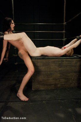 Photo number 13 from Fantasy Stealing shot for tsseduction on Kink.com. Featuring Morgan Bailey and Vennue Longhorn in hardcore BDSM & Fetish porn.