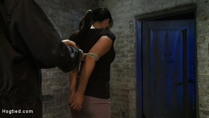 Photo number 1 from Girl from Hawaii, walks into the wrong sub basement,<br> Gets the Insex treatment.  So helpless.. shot for Hogtied on Kink.com. Featuring Kayme Kai in hardcore BDSM & Fetish porn.
