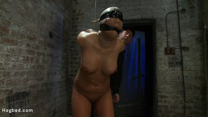 Photo number 10 from Girl from Hawaii, walks into the wrong sub basement,<br> Gets the Insex treatment.  So helpless.. shot for Hogtied on Kink.com. Featuring Kayme Kai in hardcore BDSM & Fetish porn.
