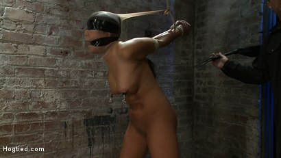 Photo number 12 from Girl from Hawaii, walks into the wrong sub basement,<br> Gets the Insex treatment.  So helpless.. shot for Hogtied on Kink.com. Featuring Kayme Kai in hardcore BDSM & Fetish porn.