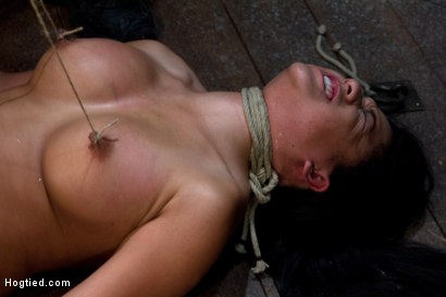 Photo number 15 from Tied and Stretch Huge Nipples<br>Brutal Squirting Orgasms<br>Screaming Never Sounded so Good. shot for Hogtied on Kink.com. Featuring Kayme Kai in hardcore BDSM & Fetish porn.