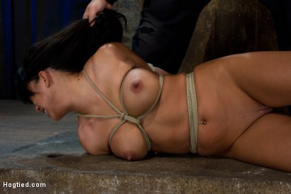 Photo number 3 from Sexy Hawaiian brutally hogtied suffering orgasm after orgasm until she is lying in her own squirt.  shot for Hogtied on Kink.com. Featuring Kayme Kai in hardcore BDSM & Fetish porn.