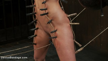 Photo number 9 from Ariel X takes on the double reverse zipper<br>and FOUR Dommes shot for Device Bondage on Kink.com. Featuring Isis Love, Madison Young and Ariel X in hardcore BDSM & Fetish porn.