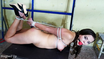 Adina Whipped and Hogtied