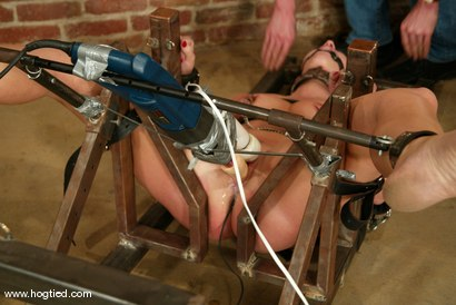 Photo number 6 from Kat and Claire Adams shot for Hogtied on Kink.com. Featuring Kat and Claire Adams in hardcore BDSM & Fetish porn.