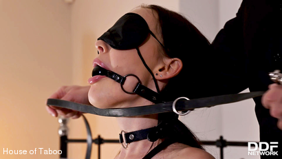 Ultimate BDSM Pleasures