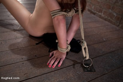 Photo number 6 from Little Emma Haize severely bound. Made to cum!<br> Brutal crotch rope pulls her off the floor! shot for Hogtied on Kink.com. Featuring Emma Haize in hardcore BDSM & Fetish porn.