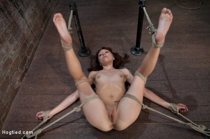 Photo number 1 from Emma Haize is helpless we clamp her sensitive nipples<br> Flog her swollen pussy, make her squirt! shot for Hogtied on Kink.com. Featuring Emma Haize in hardcore BDSM & Fetish porn.