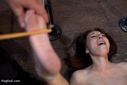 Photo number 7 from Emma Haize is helpless we clamp her sensitive nipples<br> Flog her swollen pussy, make her squirt! shot for Hogtied on Kink.com. Featuring Emma Haize in hardcore BDSM & Fetish porn.