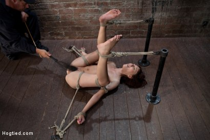 Photo number 8 from Emma Haize is helpless we clamp her sensitive nipples<br> Flog her swollen pussy, make her squirt! shot for Hogtied on Kink.com. Featuring Emma Haize in hardcore BDSM & Fetish porn.